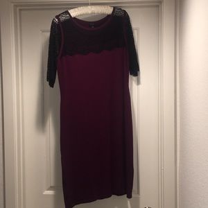 Unique-Ann Taylor Sweater and Lace Dress